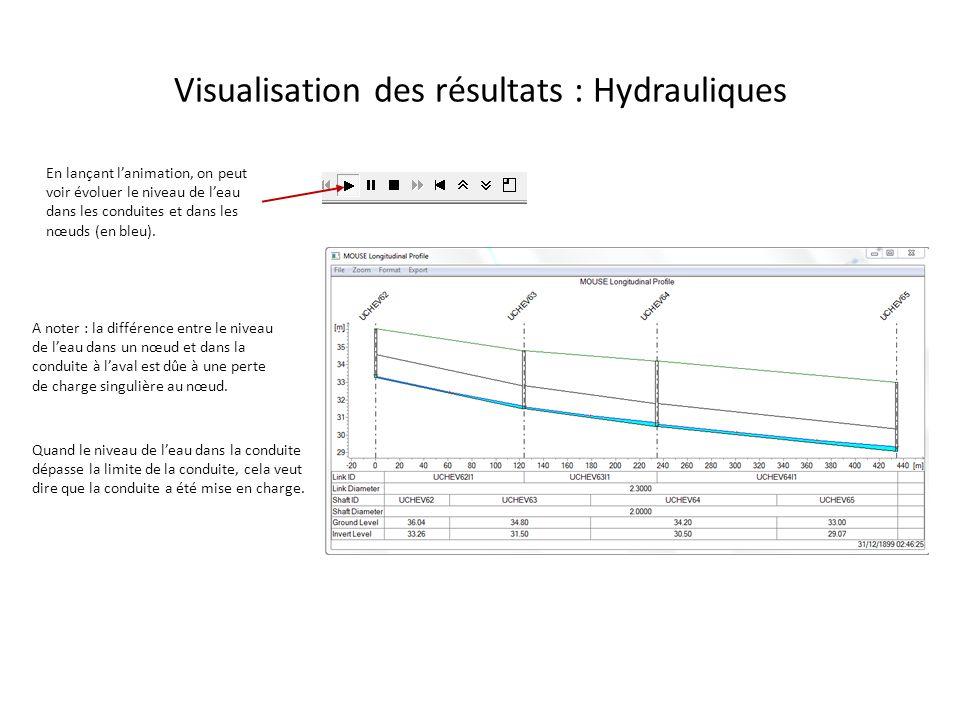 Visualisation des résultats : Hydrauliques En lançant lanimation, on peut voir évoluer le niveau de leau dans les conduites et dans les nœuds (en bleu