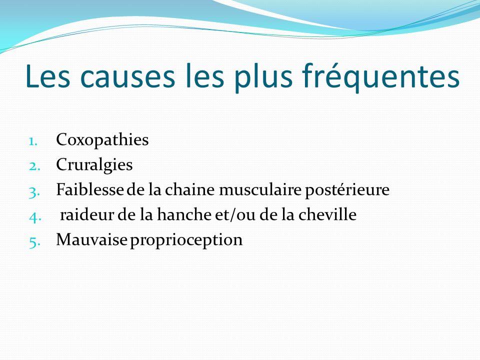 Les causes les plus fréquentes 1. Coxopathies 2. Cruralgies 3. Faiblesse de la chaine musculaire postérieure 4. raideur de la hanche et/ou de la chevi
