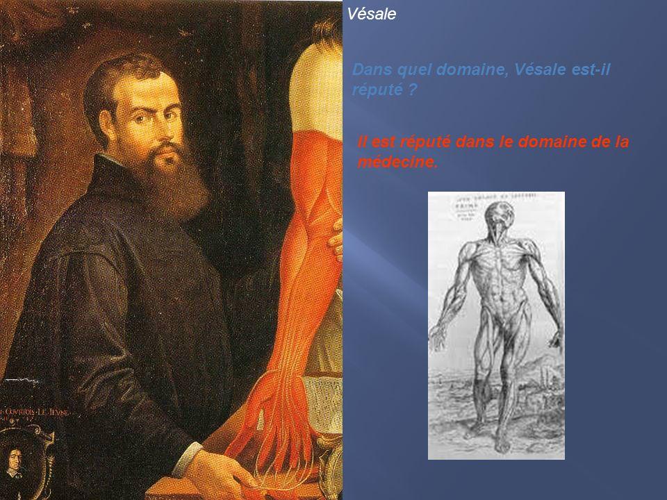 Vésale Dans quel domaine, Vésale est-il réputé ? Il est réputé dans le domaine de la médecine.