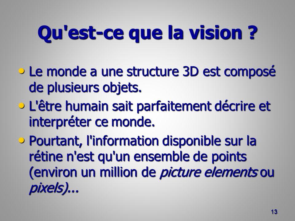 Qu est-ce que la vision .Le monde a une structure 3D est composé de plusieurs objets.