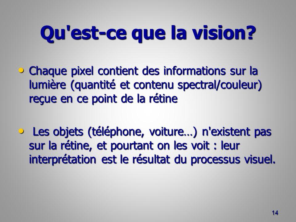 Qu est-ce que la vision.