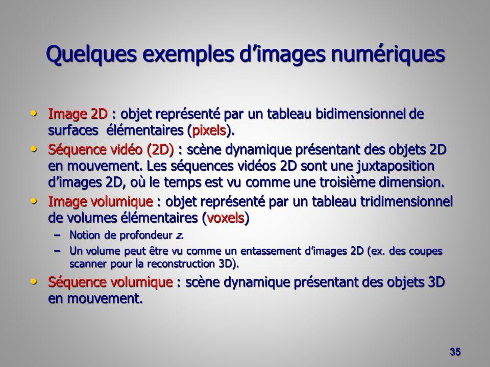 Quelques exemples dimages numériques Image 2D : objet représenté par un tableau bidimensionnel de surfaces élémentaires (pixels).