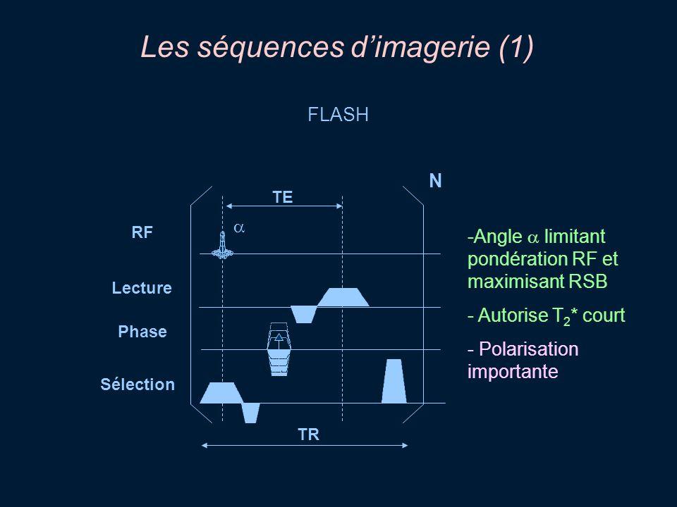 Les séquences dimagerie (1) FLASH -Angle limitant pondération RF et maximisant RSB - Autorise T 2 * court - Polarisation importante