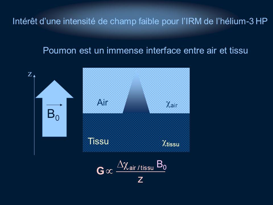 Poumon est un immense interface entre air et tissu z B0B0 Tissu tissu Air air B0B0 G Intérêt dune intensité de champ faible pour lIRM de lhélium-3 HP