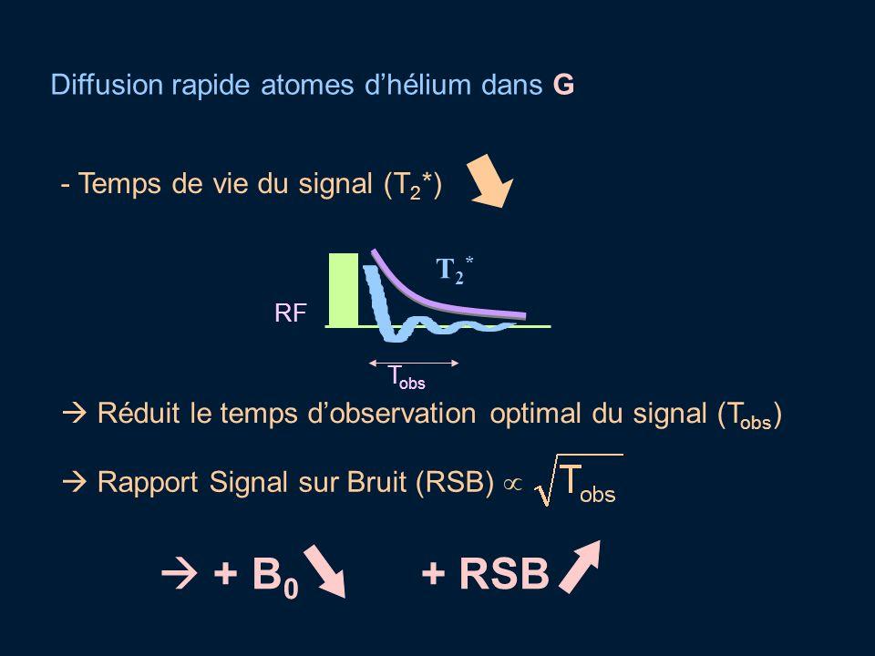 Diffusion rapide atomes dhélium dans G + B 0 + RSB - Temps de vie du signal (T 2 *) Réduit le temps dobservation optimal du signal (T obs ) Rapport Si