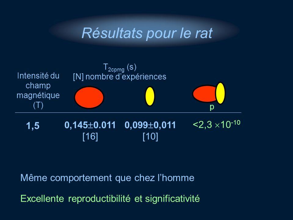 Intensité du champ magnétique (T) T 2cpmg (s) [N] nombre dexpériences 1,5 0,099 0,011 [10] 0,145 0.011 [16] <2,3 10 -10 Résultats pour le rat Excellen
