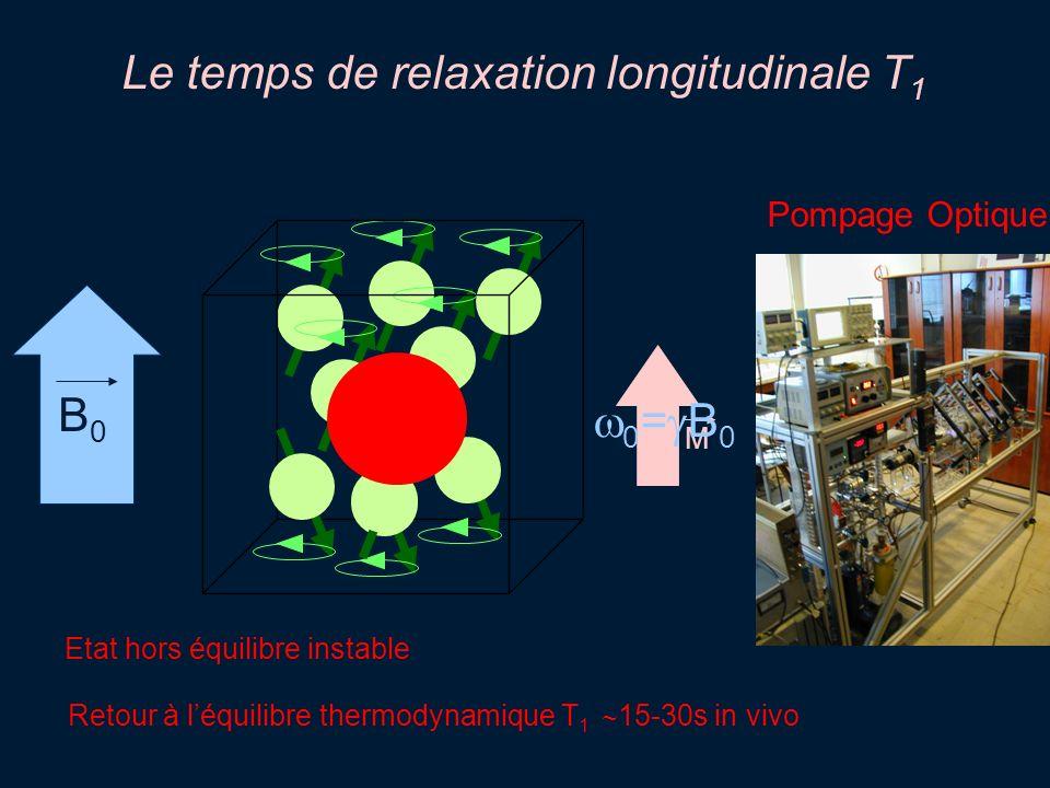 B0B0 M Pompage Optique Etat hors équilibre instable Retour à léquilibre thermodynamique T 1 15-30s in vivo Le temps de relaxation longitudinale T 1 0