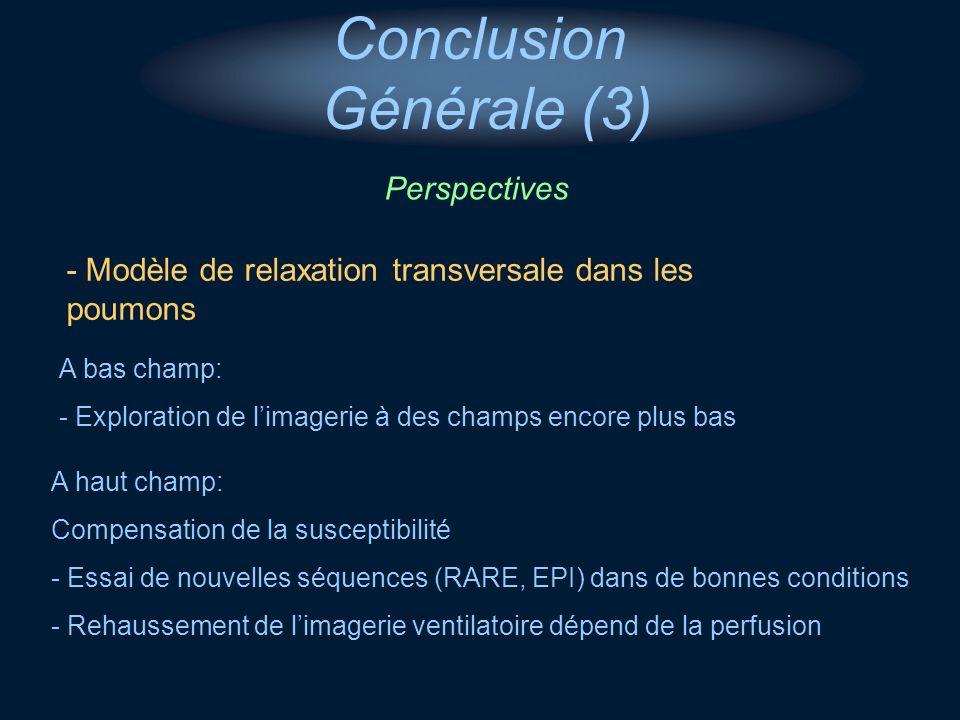 - Modèle de relaxation transversale dans les poumons A bas champ: - Exploration de limagerie à des champs encore plus bas A haut champ: Compensation d