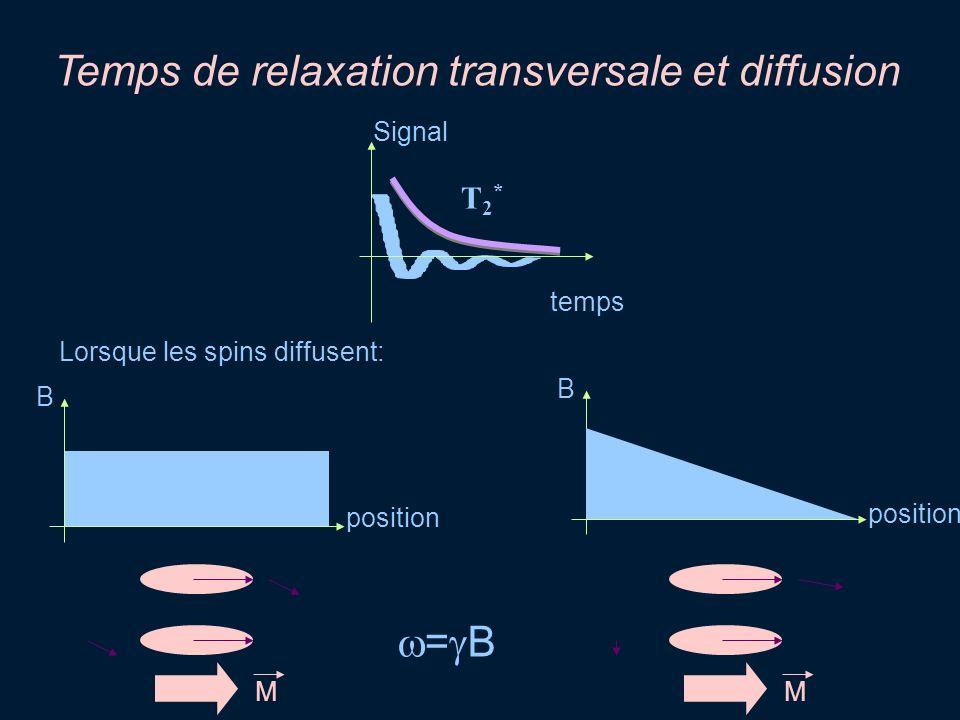 Temps de relaxation transversale et diffusion temps Signal T2*T2* B M B M position = B Lorsque les spins diffusent: