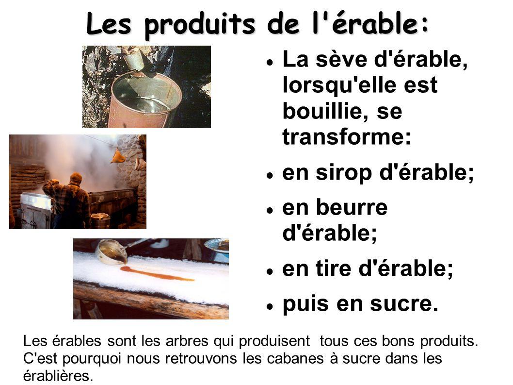 Les produits de l érable: La sève d érable, lorsqu elle est bouillie, se transforme: en sirop d érable; en beurre d érable; en tire d érable; puis en sucre.