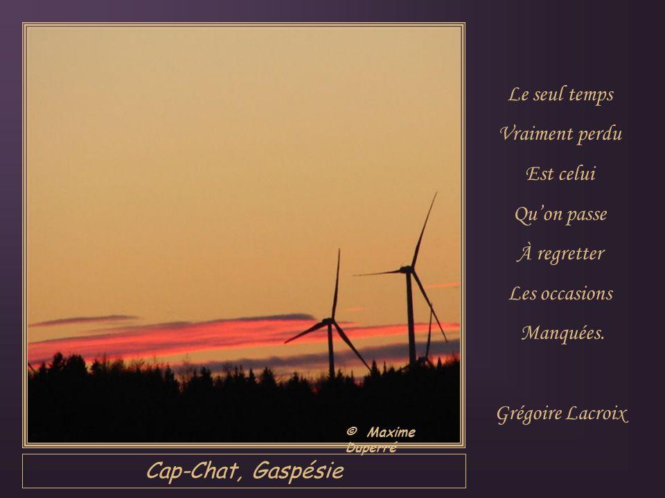 Jonquière, Saguenay Nous avons beau dire: «Mon temps… Je perds mon temps… Je prends mon temps…» Ce possessif Est dérisoire: Cest toujours lui Qui nous