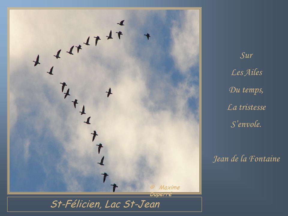 Chambord, Lac St-Jean Pourquoi faut-il Quon oublie Ses rêves? Le temps vient où On aurait le temps De les réaliser, On les a oubliés. Claire de Lamira