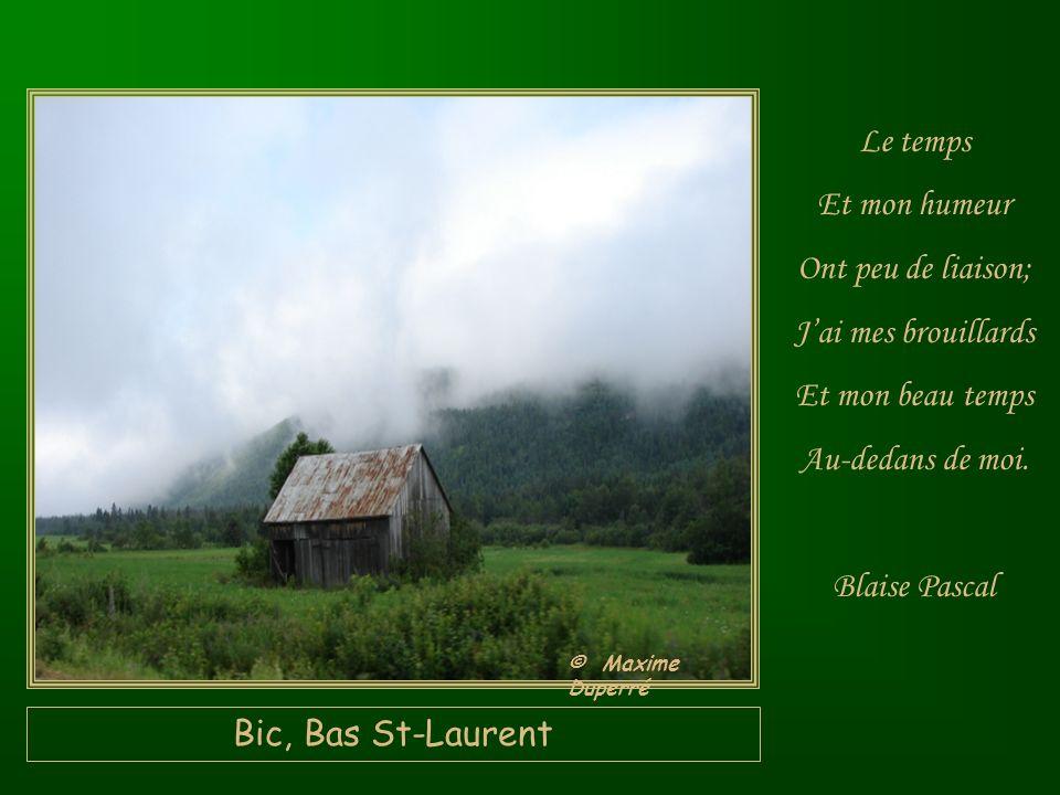 St-Félicien, Lac St-Jean Sur Les Ailes Du temps, La tristesse Senvole. Jean de la Fontaine © Maxime Duperré