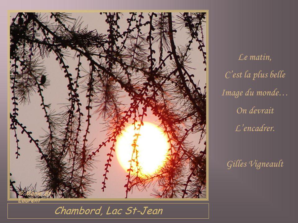 Chambord, Lac St-Jean Le matin, Cest la plus belle Image du monde… On devrait Lencadrer.