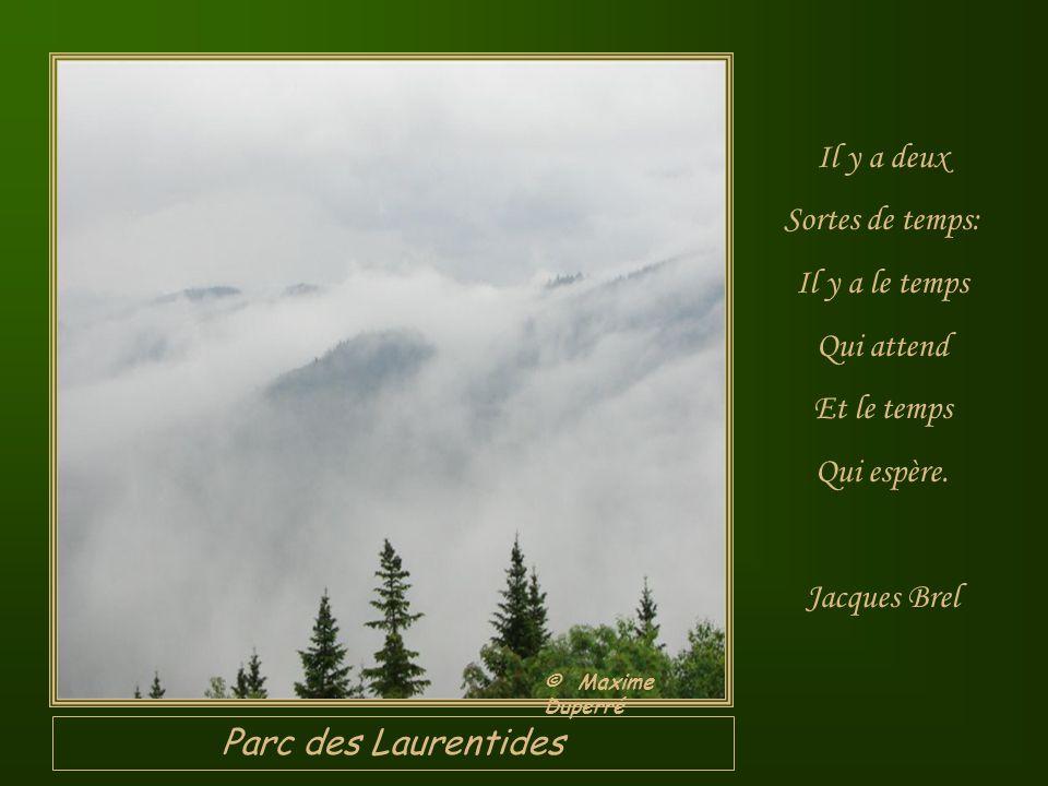 Parc des Laurentides Il y a deux Sortes de temps: Il y a le temps Qui attend Et le temps Qui espère.
