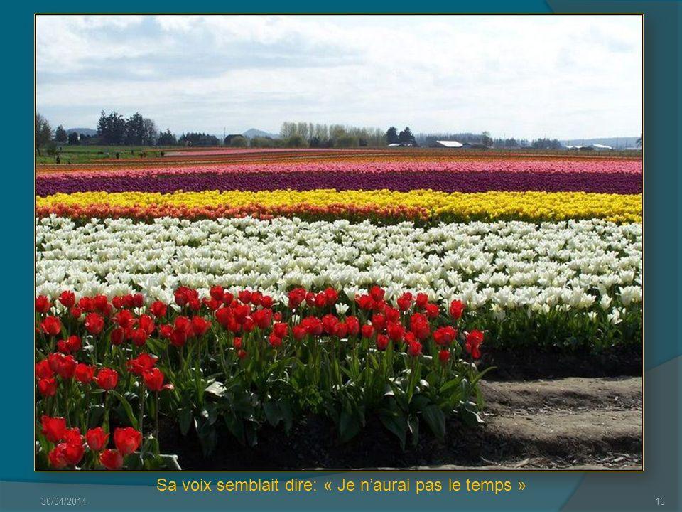 30/04/201415 Quelques mots damour sur un air de printemps