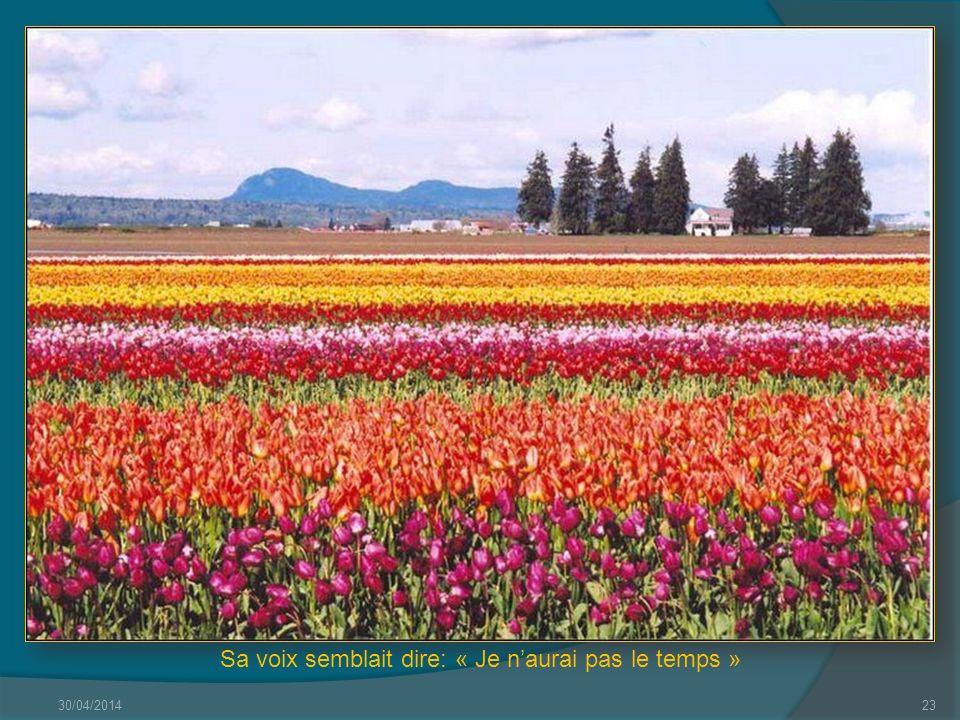 30/04/201422 Quelques mots damour sur un air de printemps