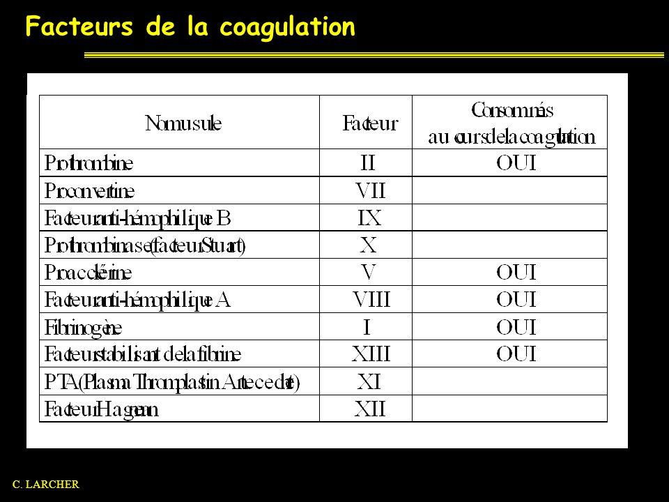 Hémostase Hémostase primaire et thrombus blanc Temps vasculaire Temps plaquettaire Coagulation et thrombus rouge Formation de la thrombinase Formation de la thrombine Formation du réseau de fibrine Fibrinolyse C.