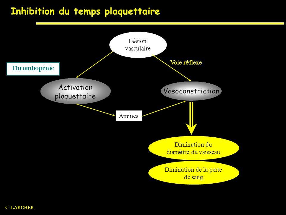 Inhibition du temps plaquettaire Diminution du diam è tre du vaisseau Diminution de la perte de sang L é sion vasculaire Voie r é flexe Vasoconstricti