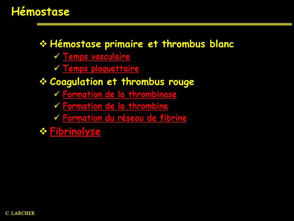 Hémostase Hémostase primaire et thrombus blanc Temps vasculaire Temps plaquettaire Coagulation et thrombus rouge Formation de la thrombinase Formation