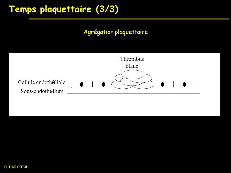 Temps plaquettaire (3/3) Agrégation plaquettaire Sous-endoth é lium Cellule endoth é liale Thrombus blanc C. LARCHER