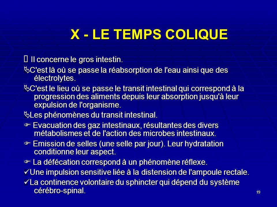 19 X - LE TEMPS COLIQUE Il concerne le gros intestin. Il concerne le gros intestin. C'est là où se passe la réabsorption de l'eau ainsi que des électr