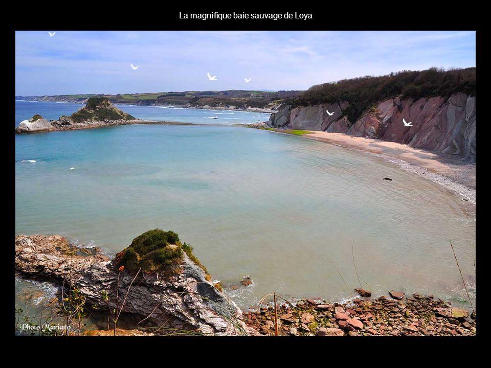 .. Merveilleux paysages que nous offre cette magnifique côte Basque