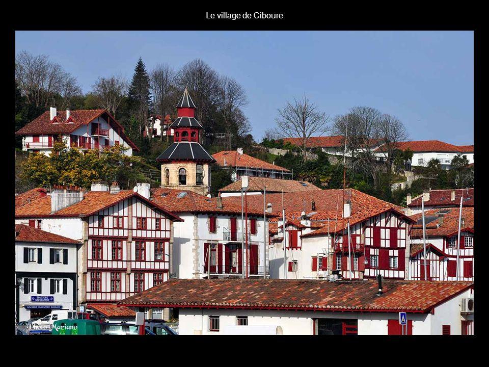 . Les montagnes dun côté, les plages et falaises de lautre, le Sentier du Littoral basque offre des panoramas grandioses le long des plus beaux paysag