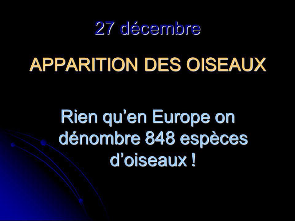 27 décembre APPARITION DES OISEAUX Rien quen Europe on dénombre 848 espèces doiseaux !