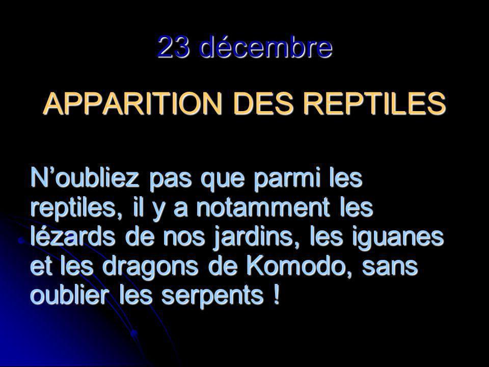 23 décembre APPARITION DES REPTILES Noubliez pas que parmi les reptiles, il y a notamment les lézards de nos jardins, les iguanes et les dragons de Komodo, sans oublier les serpents !