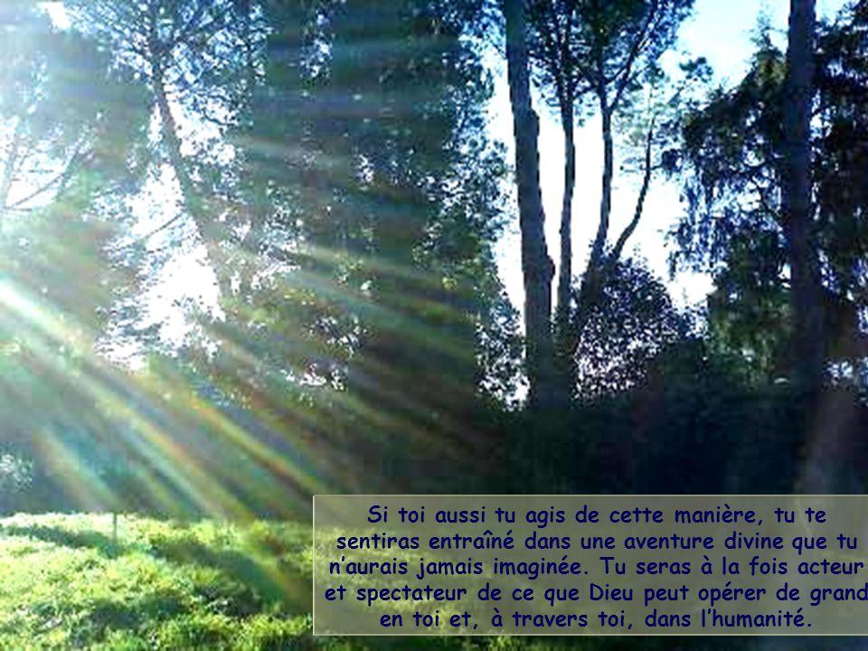 Dans la vie, le chrétien, ainsi que chaque homme de bonne volonté, est appelé à marcher vers le soleil, dans la lumière de son propre rayon, qui est d