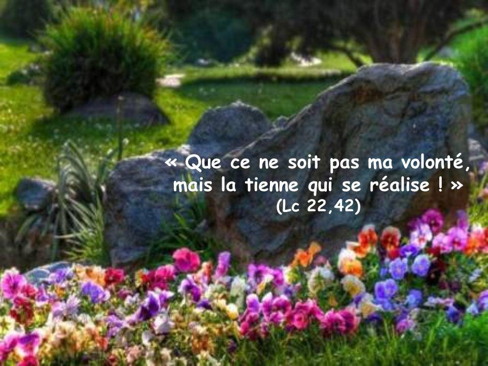 « Que ce ne soit pas ma volonté, mais la tienne qui se réalise ! » (Lc 22,42)