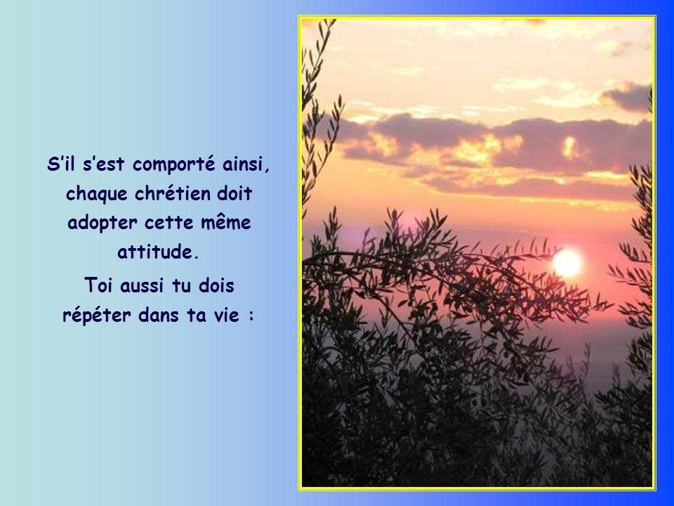 Dans la vie, le chrétien, ainsi que chaque homme de bonne volonté, est appelé à marcher vers le soleil, dans la lumière de son propre rayon, qui est différent et distinct de tous les autres.