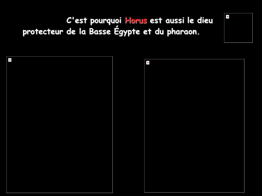 C'est pourquoi Horus est aussi le dieu protecteur de la Basse Égypte et du pharaon.