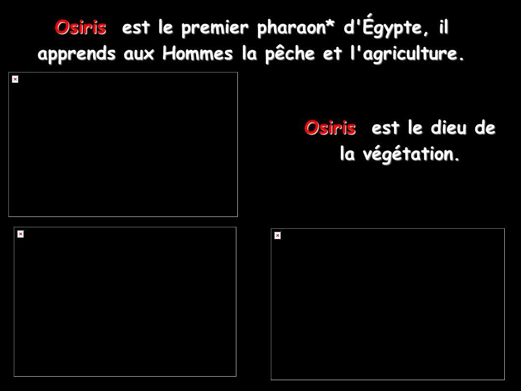 Osiris est le premier pharaon* d'Égypte, il apprends aux Hommes la pêche et l'agriculture. Osiris est le dieu de la végétation.