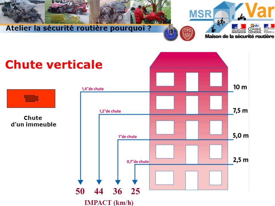 50443625 IMPACT (km/h) Chute verticale Chute dun immeuble Atelier la sécurité routière pourquoi ?