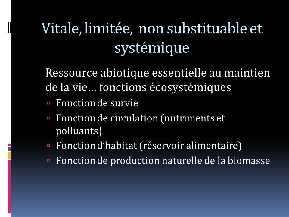 Vitale, limitée, non substituable et systémique Ressource abiotique essentielle au maintien de la vie… fonctions écosystémiques Fonction de survie Fonction de circulation (nutriments et polluants) Fonction dhabitat (réservoir alimentaire) Fonction de production naturelle de la biomasse