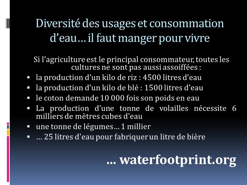 Diversité des usages et consommation deau… il faut manger pour vivre Si lagriculture est le principal consommateur, toutes les cultures ne sont pas aussi assoiffées : la production dun kilo de riz : 4500 litres deau la production dun kilo de blé : 1500 litres deau le coton demande 10 000 fois son poids en eau La production dune tonne de volailles nécessite 6 milliers de mètres cubes deau une tonne de légumes… 1 millier … 25 litres d eau pour fabriquer un litre de bière … waterfootprint.org