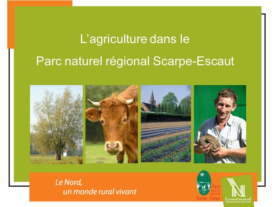Lagriculture dans le Parc naturel régional Scarpe-Escaut