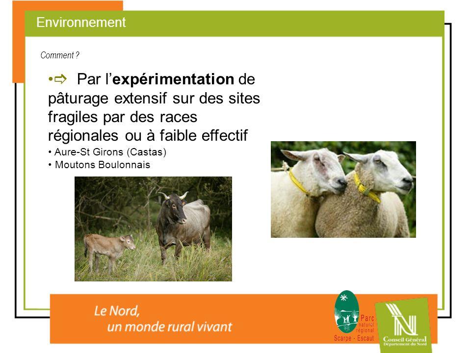 Par lexpérimentation de pâturage extensif sur des sites fragiles par des races régionales ou à faible effectif Aure-St Girons (Castas) Moutons Boulonn