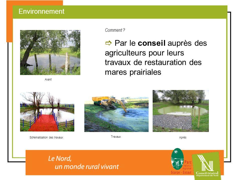 Par le conseil auprès des agriculteurs pour leurs travaux de restauration des mares prairiales Environnement Avant Schématisation des travaux Travaux