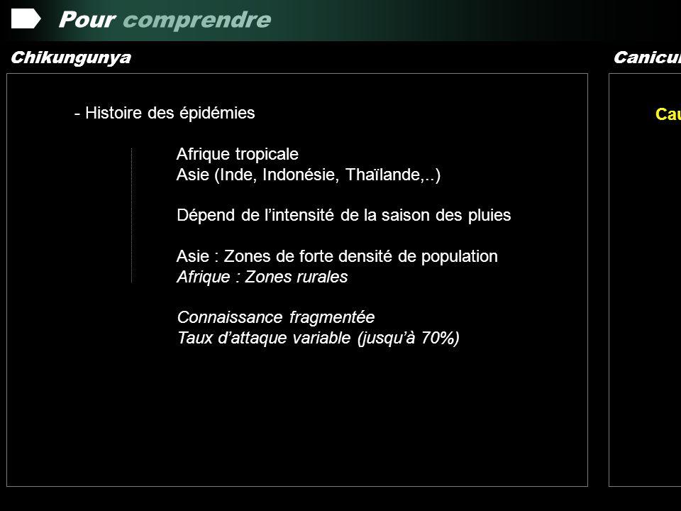 Les Faits 17 mars 2005 :Signal dalerte InVS – DGS Epidémie Chik Comores (1300 cas) Chikungunya Canicule 15 avril 2005 : Niveau de vigilance vis-à-vis du risque dimportation de cas 10 mai 2005 : Confirmation biologique de cas autochtone Dispositif de surveillance active et dintervention