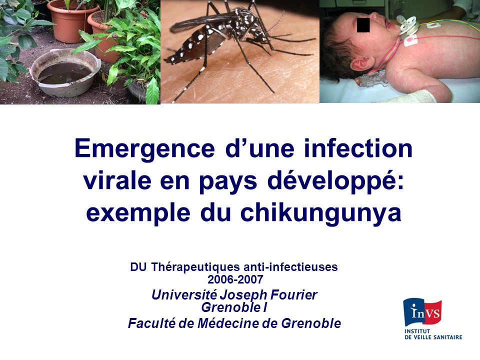 Le chikungunya est à DO depuis juillet 2006 France métropolitaine : cas confirmés Zones avec vecteur : dès la suspicion clinique Labos effectuant le diagnostic –CNR Lyon et Marseille (séro et PCR) –Cerba (séro) –LMM (séro) http://www.invs.sante.fr