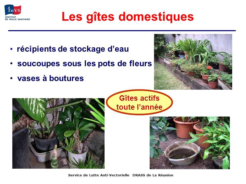 récipients de stockage deau soucoupes sous les pots de fleurs vases à boutures Gîtes actifs toute lannée Service de Lutte Anti-Vectorielle DRASS de La