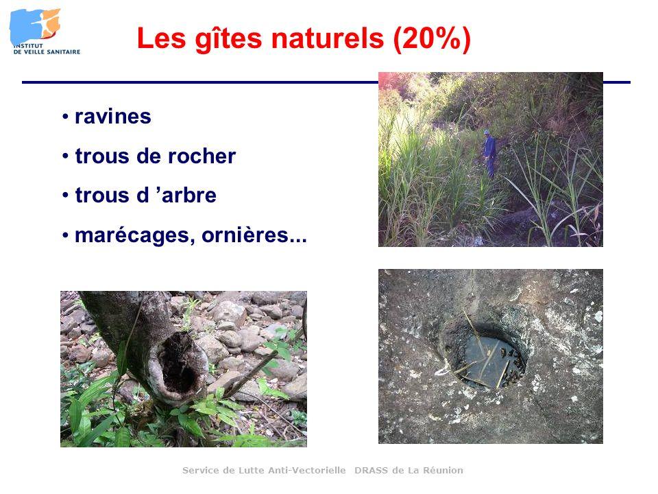 ravines trous de rocher trous d arbre marécages, ornières... Service de Lutte Anti-Vectorielle DRASS de La Réunion Les gîtes naturels (20%)