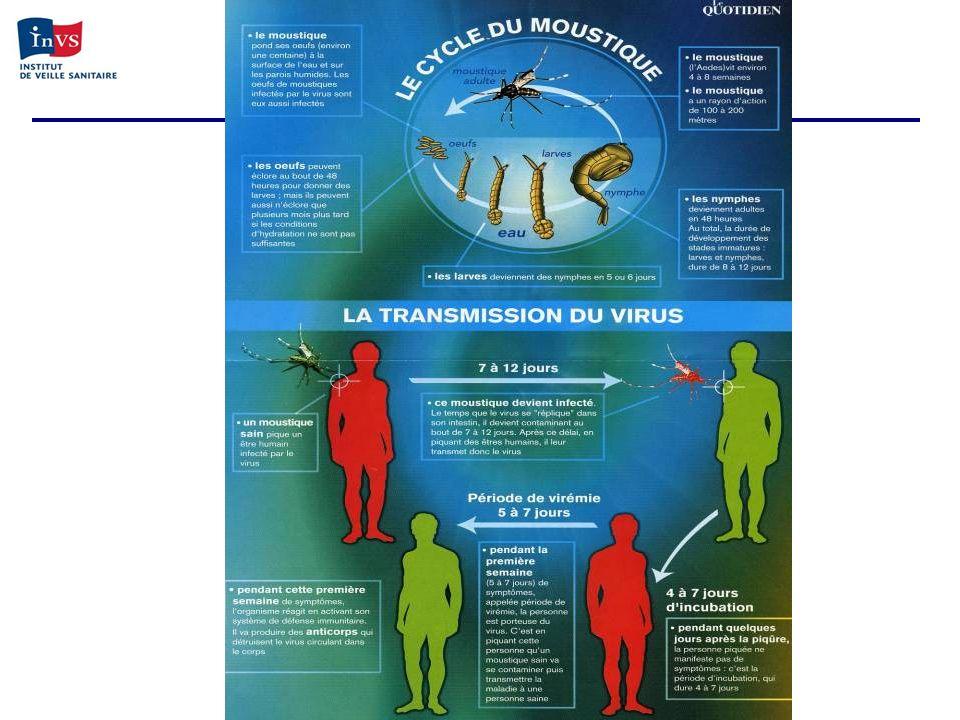 Détection du chikungunya à la Réunion Fin mars 2005 : signalement de lépidémie aux Comores Avril 2005 : mise en place dispositif de surveillance 29 avril 2005 : Un cas importé confirmé à St-Pierre 4 mai 2005 : Trois cas autochtones cliniquement suspectés à St-Pierre