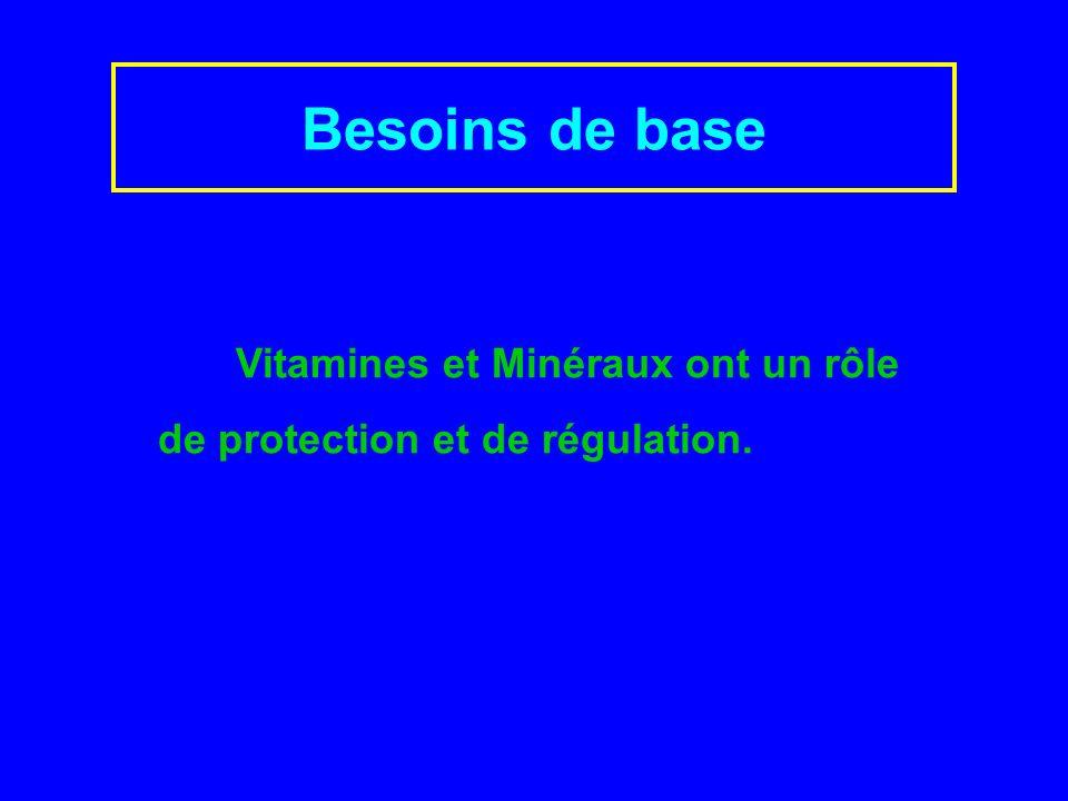 Vitamines et Minéraux ont un rôle de protection et de régulation. Besoins de base