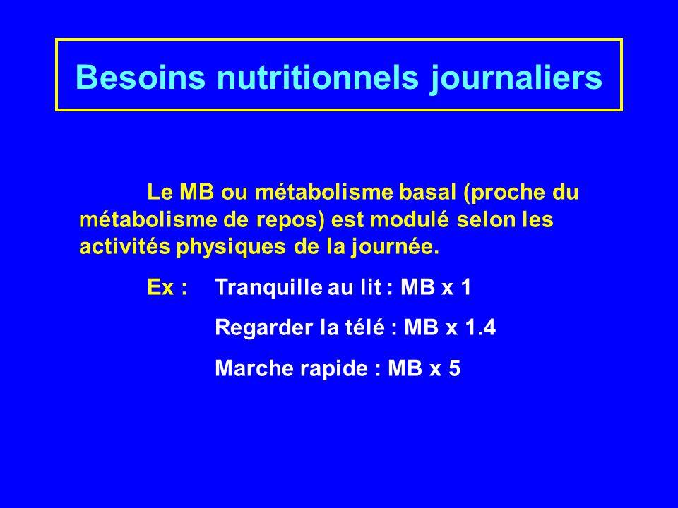Besoins nutritionnels journaliers Le MB ou métabolisme basal (proche du métabolisme de repos) est modulé selon les activités physiques de la journée.