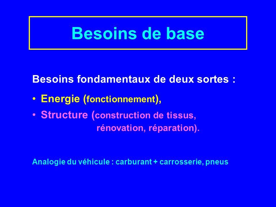 Besoins fondamentaux de deux sortes : Energie ( fonctionnement ), Structure ( construction de tissus, rénovation, réparation).