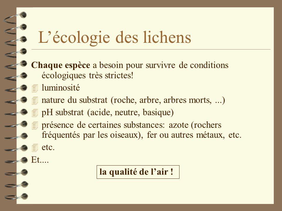Caractéristiques des lichens: 4 Pouvoir LITHOGENE = permet de sinstaller en pionnier sur des substrats difficiles 4 RESISTANCE aux températures extrêm